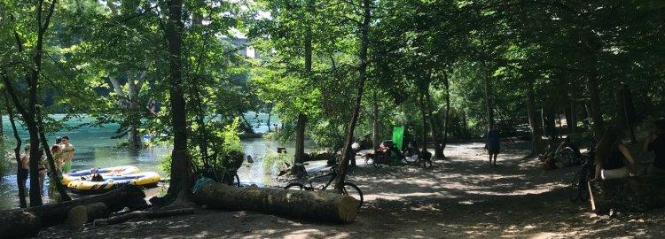 Le «Rhône vert», entre forêt naturelle et arbres de parc